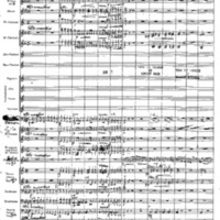 BB1Concert Fantasie (arr. V Bach) (incomplete score).pdf