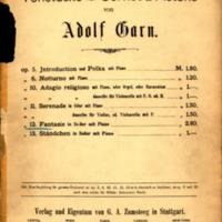 Fantasie-Adolf Garn.pdf