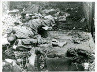 Photograph of Jewish Corpses in a Railcar