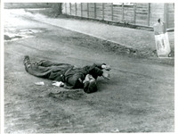 Photograph of a Dead Man in the Street