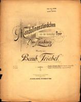 Mandolinen-Standchen - Bernhard Triebel.pdf